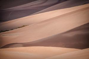 SandDunes Shadows