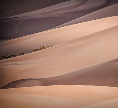 SandDunes Shadows