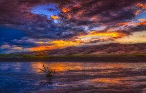 Sunset & Driftwood-1