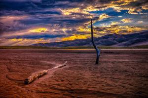 Sunset & Driftwood